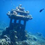 Unterwasserwelt in der Jemeluk Bucht: Unterwassertempel