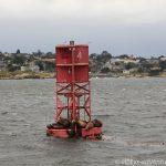 im Hafenbecken von Monterey