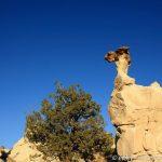 Rio Puerco Rock Formations: kleiner Drache