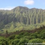 Ko'olau Mountains - Maunawili Trail
