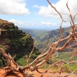 Canyon Trail - Waimea Canyon