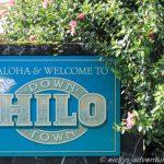 Hilo Down Town
