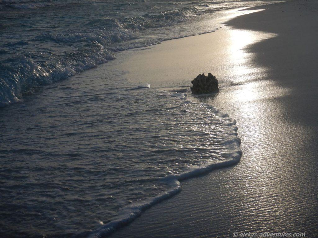 auf einer Sandbank im Nord Male Atoll