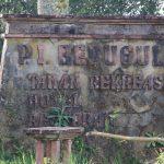 P.I. Bedugul Taman Rekrasi Hotel