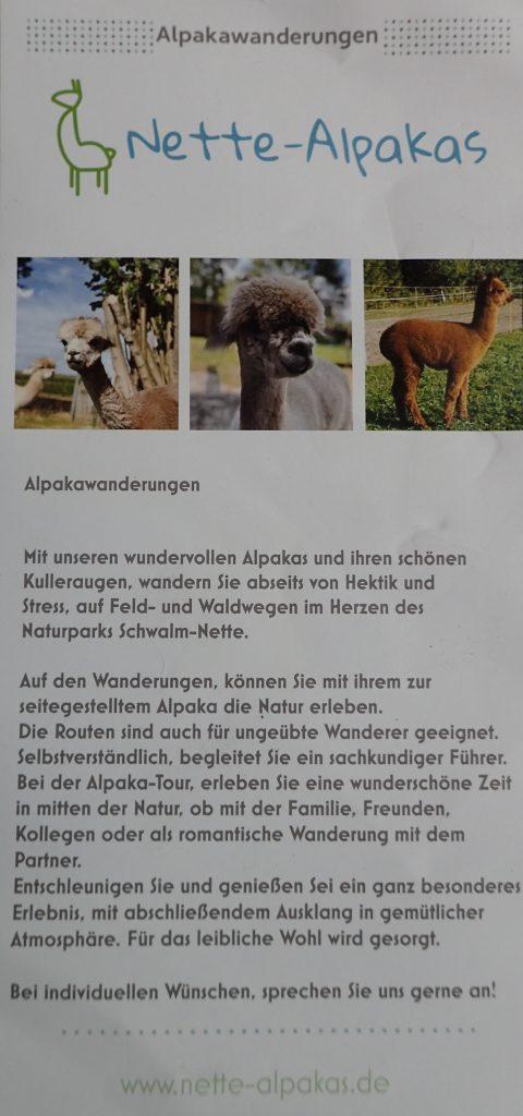 Nette-Alpakas